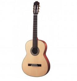 Guitar Kapok LC-18